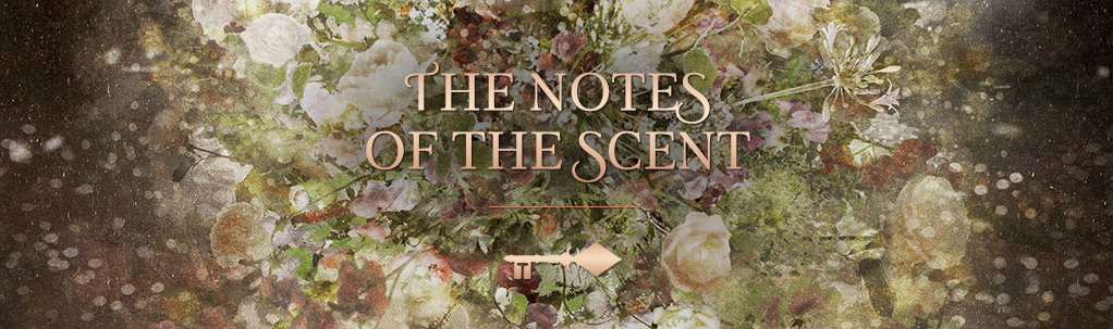 Scent of a dream - The notes